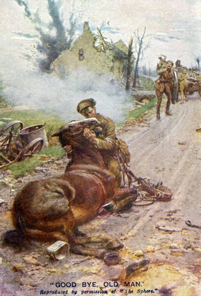 Goodbye Old Man Soldier and dying horse during WWI #594559