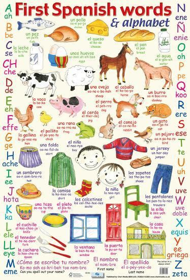 'First Spanish Words & Alphabet' Posters | AllPosters