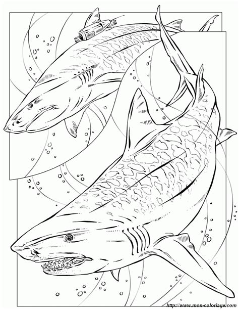 Megalodon Coloring Pages - Coloring Home