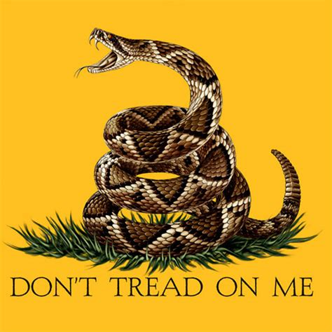 Don't Tread On Me USA Patriotic Yellow Long Sleeve Graphic