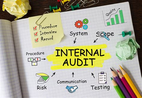 An Internal Plan Audit Team Essential for Anticipating