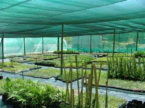 Agricultural Shade Cloth for Greenhouse and Tree Protection