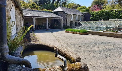 Lost Gardens of Heligan - Mevagissey   Cornwall Guide